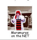 Maramures on the Net